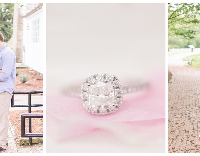 Historic Oak View Park | Emily & Nick Engagement | Wedding Photographer
